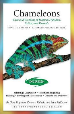 Chameleons by Gary Ferguson