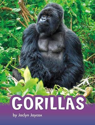 Gorillas by Jaclyn Jaycox