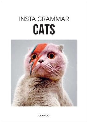 Insta Grammar: Cats by Irene Schampaert
