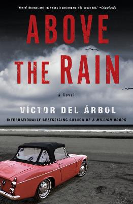 Above The Rain: A Novel book