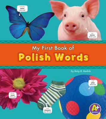 Polish Words book