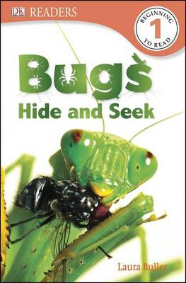 Bugs Hide and Seek by Laura Buller