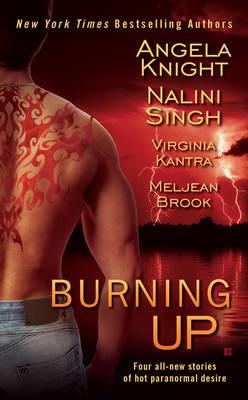 Burning Up by Meljean Brook