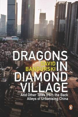 Dragons In Diamond Village And Other Tales From The Back Alleys Of Urbanising China book