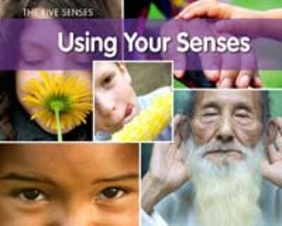 Using Your Senses by Rebecca Rissman