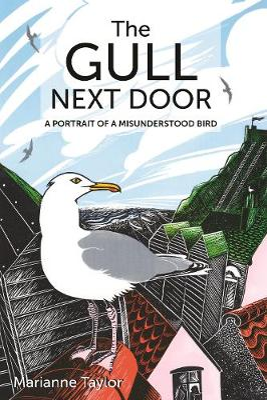 The Gull Next Door: A Portrait of a Misunderstood Bird book