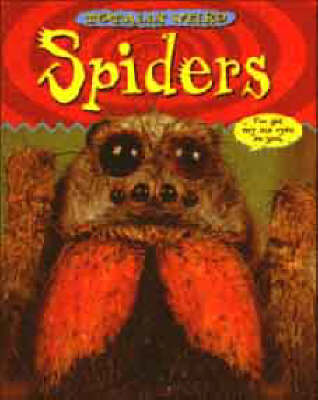 Spiders by Christine Morley