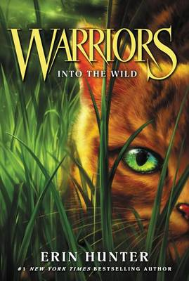 Warriors #1 by Hunter