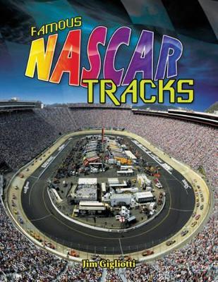 Famous NASCAR Tracks by Jim Gigliotti