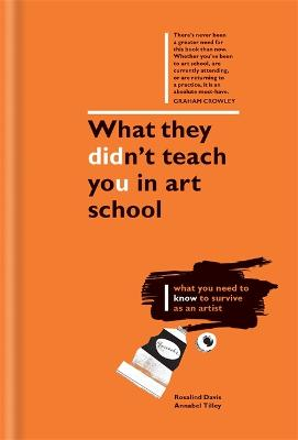 What They Didn't Teach You in Art School by Rosalind Davis