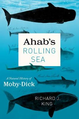 """Ahab`s Rolling Sea - A Natural History of """"Moby-Dick"""" by Richard J. King"""
