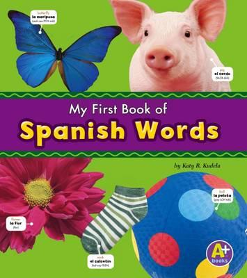 Spanish Words book