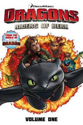 Dragons Riders of Berk - Volume 1 book