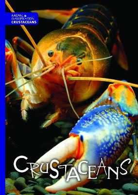 Crustaceans by Joanna Brundle