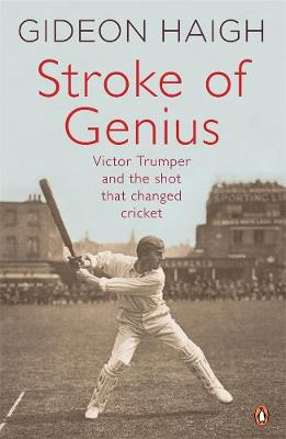 Stroke Of Genius book