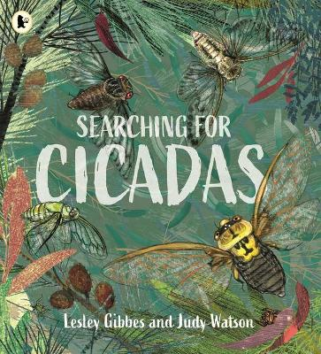 Searching for Cicadas book