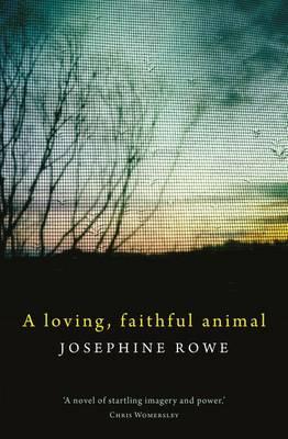Loving, Faithful Animal by Josephine Rowe