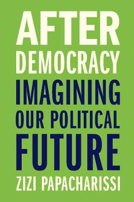 After Democracy: Imagining Our Political Future book