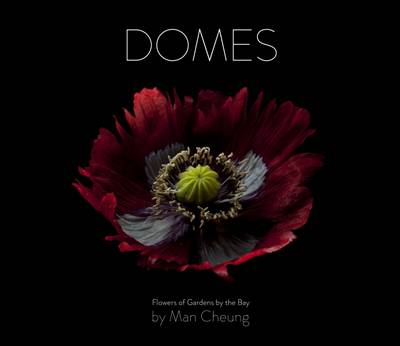 Domes by Man Cheung