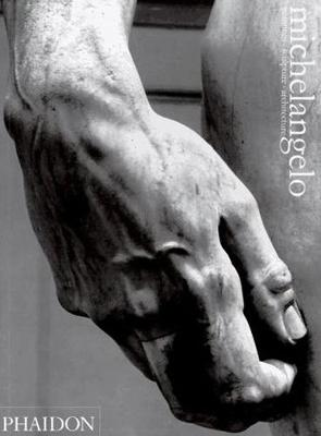 Michelangelo book