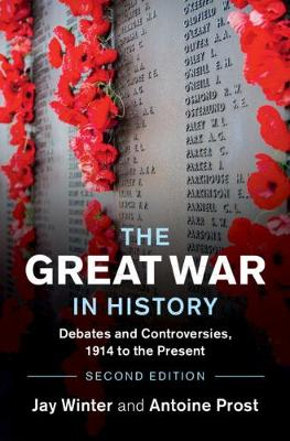 The Great War in History: Debates and Controversies, 1914 to the Present book