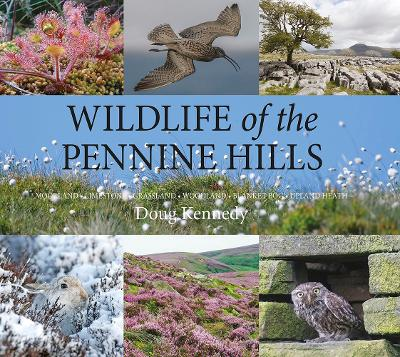 Wildlife of the Pennine Hills: Moorland : Limestone : Grassland : Woodland : Blanket Bog : Upland Heath by Doug Kennedy