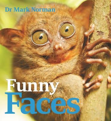 Funny Faces book