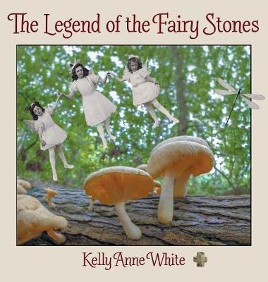 The Legend of the Fairy Stones book