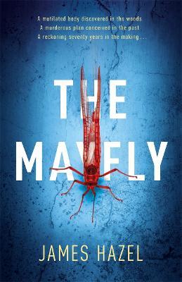 Mayfly by James Hazel