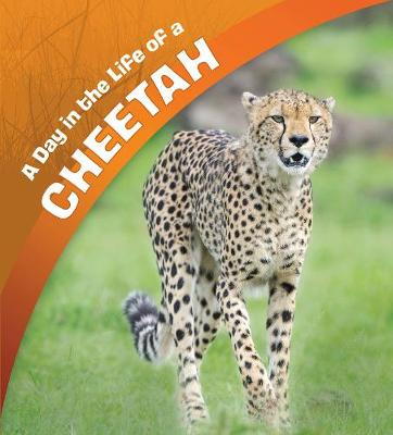 A A Day in the Life of a Cheetah by Lisa J. Amstutz