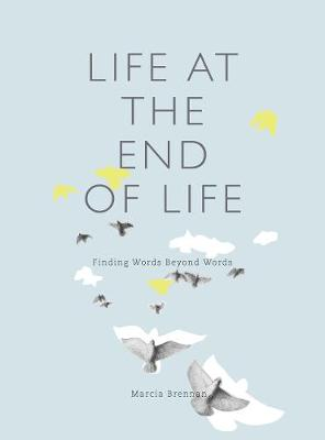 Life at the End of Life by Marcia Brennan