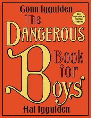 Dangerous Book for Boys book