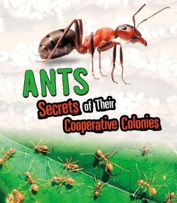 Ants: Secrets of Their Cooperative Colonies by Karen Latchana Kenney