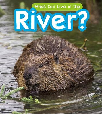 What Can Live in a River? by John-Paul Wilkins
