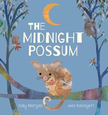 Midnight Possum by Morgan,Sally