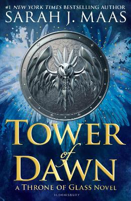 Tower of Dawn book