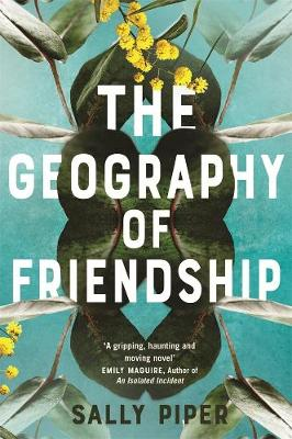 The Geography of Friendship by Sally Piper