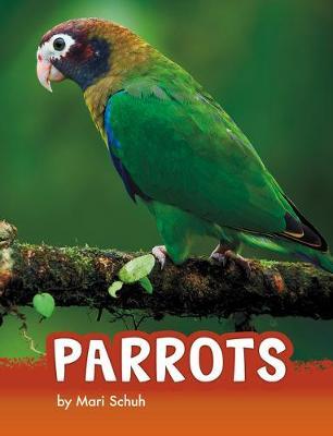 Parrots by Mari Schuh