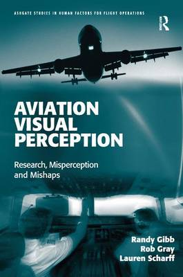 Aviation Visual Perception book