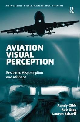 Aviation Visual Perception book