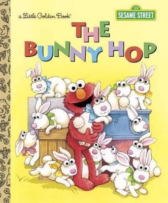 Bunny Hop book