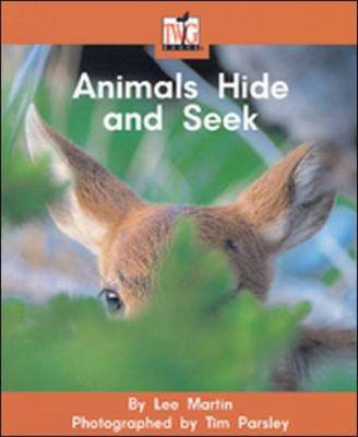 Animals Hide And Seek by Martin Lee