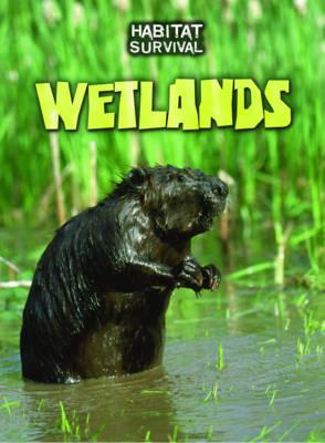 Wetlands by Buffy Silverman