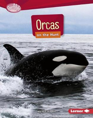 Orcas on the Hunt by Alicia Z Klepeis