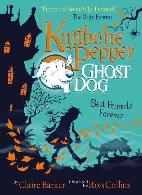Knitbone Pepper (1) by Claire Barker