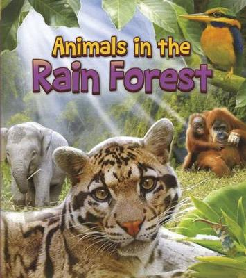 Animals in the Rain Forest by Joanne Ruelos Diaz
