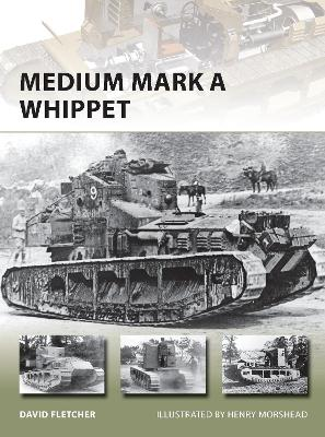 Medium Mark A Whippet by David Fletcher