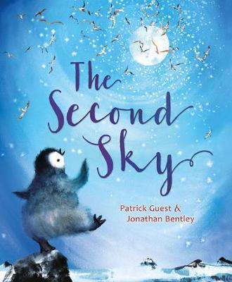 Second Sky book