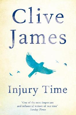 Injury Time book