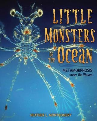 Little Monsters of the Ocean by Heather L Montgomery